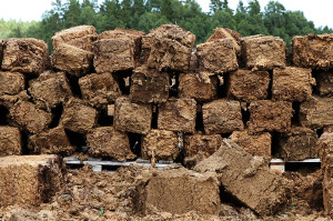 Peat block on pallet