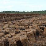 Peat Block exhumed